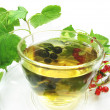 Fruit tewith currant extract — Stockfoto #9992552