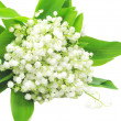 Bouquet of white lily of the valley — Stock Photo #9993212