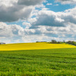 Stock Photo: Lincolnshire Wolds