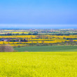 View from lincolnshire wolds — Stock Photo
