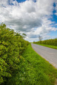 Threatened hedgerows — Stock Photo