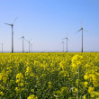 Stock Photo: Wind turbines in Lincolnshire