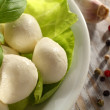 Mozzarella and basil — Stockfoto
