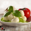 Mozzarella and basil — Foto Stock
