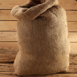 Old sack - Stock Photo