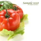 Vegetables background and white space — Zdjęcie stockowe