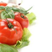 Vegetables background and white space — Foto de Stock