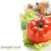 Vegetables background and white space — Stok fotoğraf