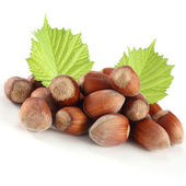 Hazelnuts on white backgroud — Stock Photo