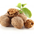 Walnuts fruits — Stock Photo #10555423