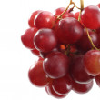 Red grapes and leaves — Stockfoto