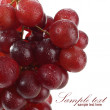 Wet fruits on white — Stockfoto