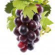 图库照片: Grapes fruits on white background