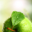 Foto de Stock  : Green apple