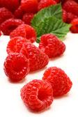Geïsoleerde vruchten samenstelling — Stockfoto
