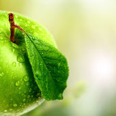 Green apple in garden — Stok fotoğraf