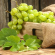 Flavor of grapes of grapes — Stock Photo