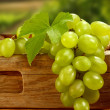 Single leaf on grapes fruits - Stock Photo