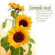 Stock Photo: Sunflowers card