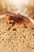 Macro photo of bread — Stock Photo