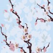 Flowers, trees, sakura - Stock Vector