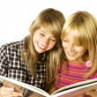 Stockfoto: Two Teenage Girls reading The Book.Education