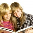 Two Teenage Girls reading The Book.Education — ストック写真