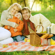 Happy Family in a Park. Picnic - Stock Photo