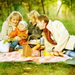 Happy Family in a Park. Picnic — Stock Photo #10676166