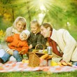 Happy Family in a Park. Picnic — Stock Photo #10676173