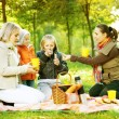 Happy Family in a Park. Picnic — Stock Photo #10676178