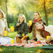 Happy Family in a Park. Picnic — Stock Photo #10676181