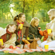 Happy Family in a Park. Picnic — Stock Photo #10676183