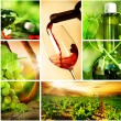 Wine. Beautiful Grapes Collage — Stock fotografie