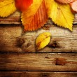 Royalty-Free Stock Photo: Autumn Leaves over wooden background