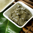 Spa Mud treatment - Stock Photo