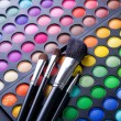 Stock Photo: Makeup. Professional multicolour eyeshadows palette