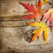 Royalty-Free Stock Photo: Autumn Leaves over wooden background. With copy space