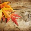 Stock Photo: Autumn Leaves over wood background. With copy space