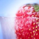Ice Strawberry Closeup — Stock Photo