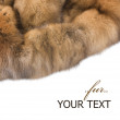 Luxury Fur. Russian Sable Isolated On White — Stock Photo
