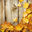 Autumn Leaves over wooden background. With copy space — Stock Photo #10677462