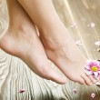 Beautiful Woman's Feet. Spa — Stock Photo #10677464