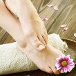 Stock Photo: Feet Spa. Pedicure