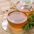Healthy Mint Tea — Stock Photo