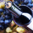 Wine Bottle closeup — Stock fotografie