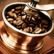Coffee Mill — Stock Photo #10678049