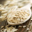 Oat closeup — Stock Photo