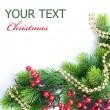 Christmas Tree with Decoration. Border design — Stock Photo