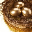 Golden Nest Eggs — 图库照片